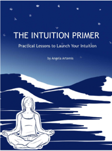 Intuition Primer Cover