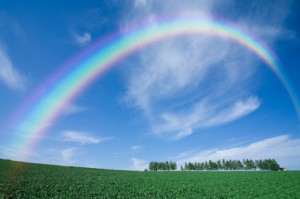 Green grass field with rainbow in the background